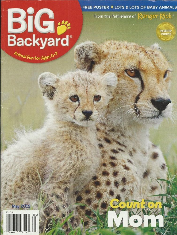 Big Backyard Magazine Animal Moms Cheetah Nursery Zebra Poster Ricky And  Pals