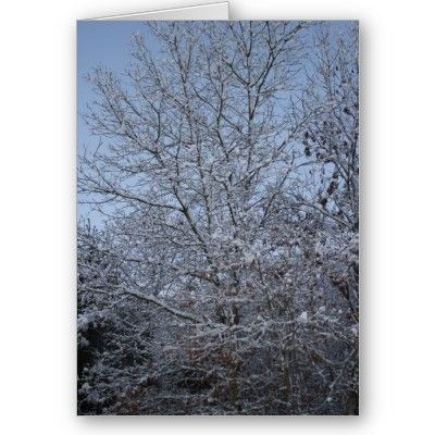 A Winter's Day Customizable Greeting Card $2.95  Also available in other sizes  zazzle.com/capecodgiftshop
