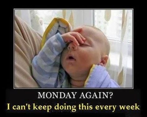 50 Funny Monday Quotes Funny Baby Memes Tomorrow Is Monday Funny Babies