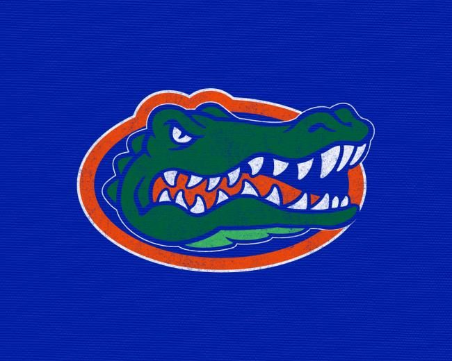 [49+] Florida Gators Wallpaper iPhone on WallpaperSafari