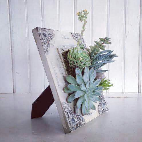 Succulent popout in photo frame | «Crafts»* | Pinterest | Gardens ...