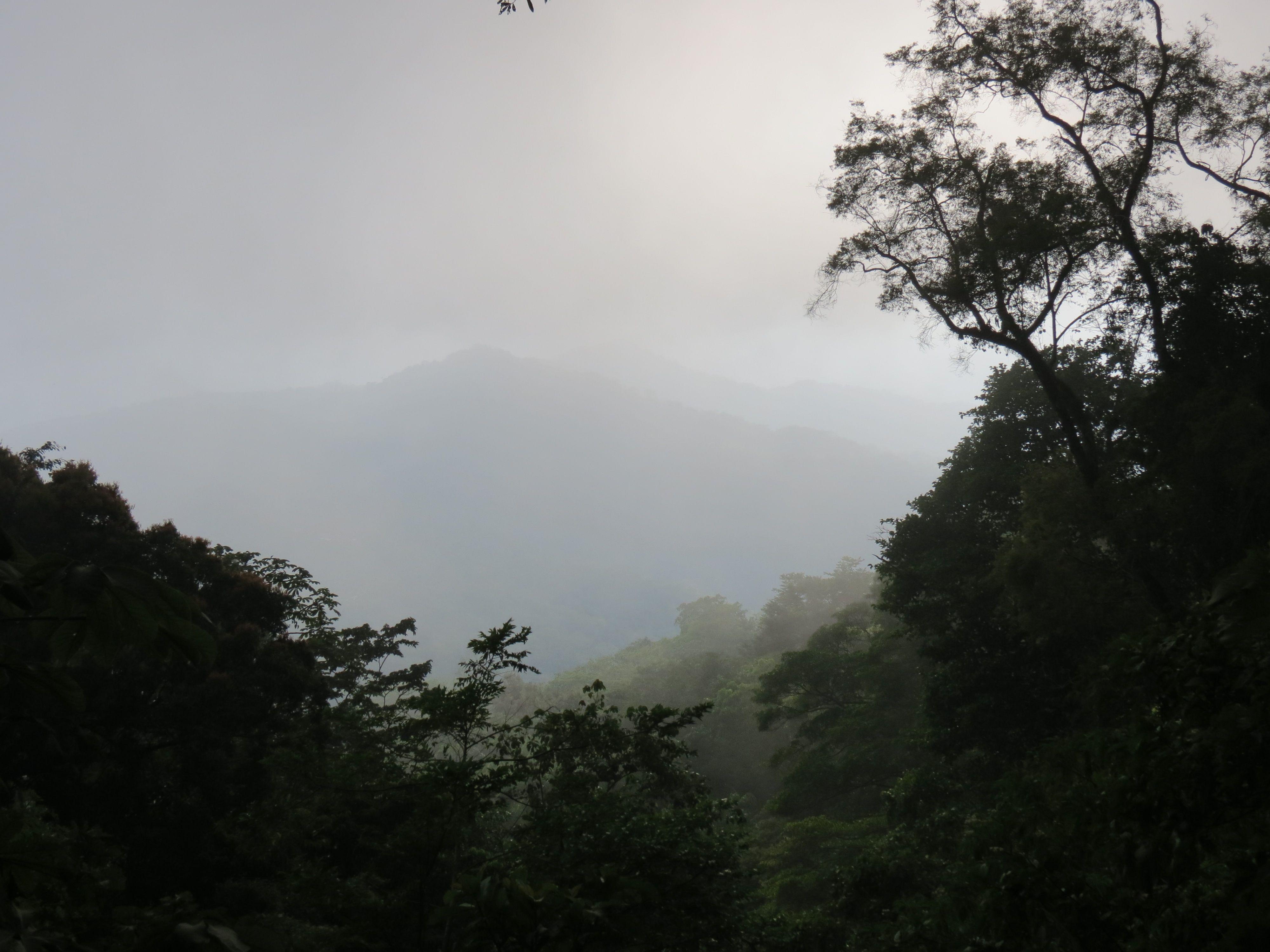 Cloud forest oaxaca mexico mexico oaxaca mexico clouds