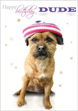Paw Prints Border Terrier Card 3544 From Www Abacuscards Co Uk Paw Print Paw Border Terrier