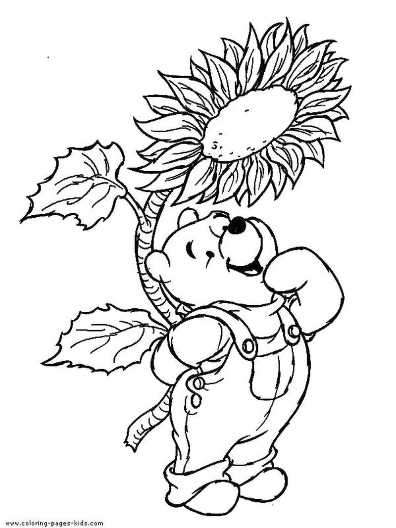Cute Winnie The Pooh Coloring Pages Pdf Download Free Coloring Sheets Cartoon Coloring Pages Disney Coloring Pages Sunflower Coloring Pages