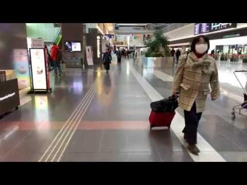 【日本の羽田空港】チェックインカウンターフロアで北ウィングから南ウィングに移動     #3DAudio, #4K, #AirportSound, #Amazing, #Ambience, #Asmr, #BinauralAudio, #BinauralCitySounds, #BinauralSounds, #Cinematic, #CityAmbienceAsmr, #CityAmbienceSleep, #CityLife, #CitySounds, #HanedaAirport, #JapanAirport, #JapanAmbienceAsmr, #JapanDestinations, #JapanTour, #JapanTravel, #JapanTrip, #JapanVacation, #RelaxingSounds, #SoundsForSleep, #TokyoAmb