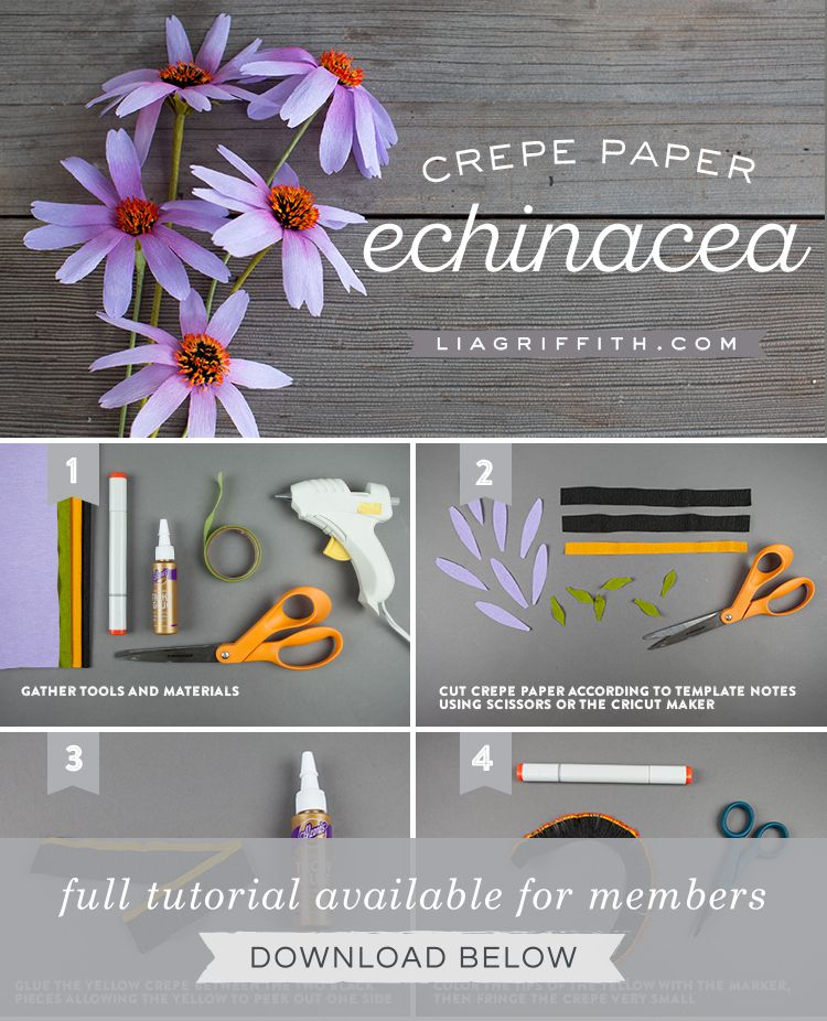 Learn How To Make Easy Crepe Paper Echinacea Flowers Lia Griffith