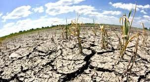 cambio climatico - Buscar con Google
