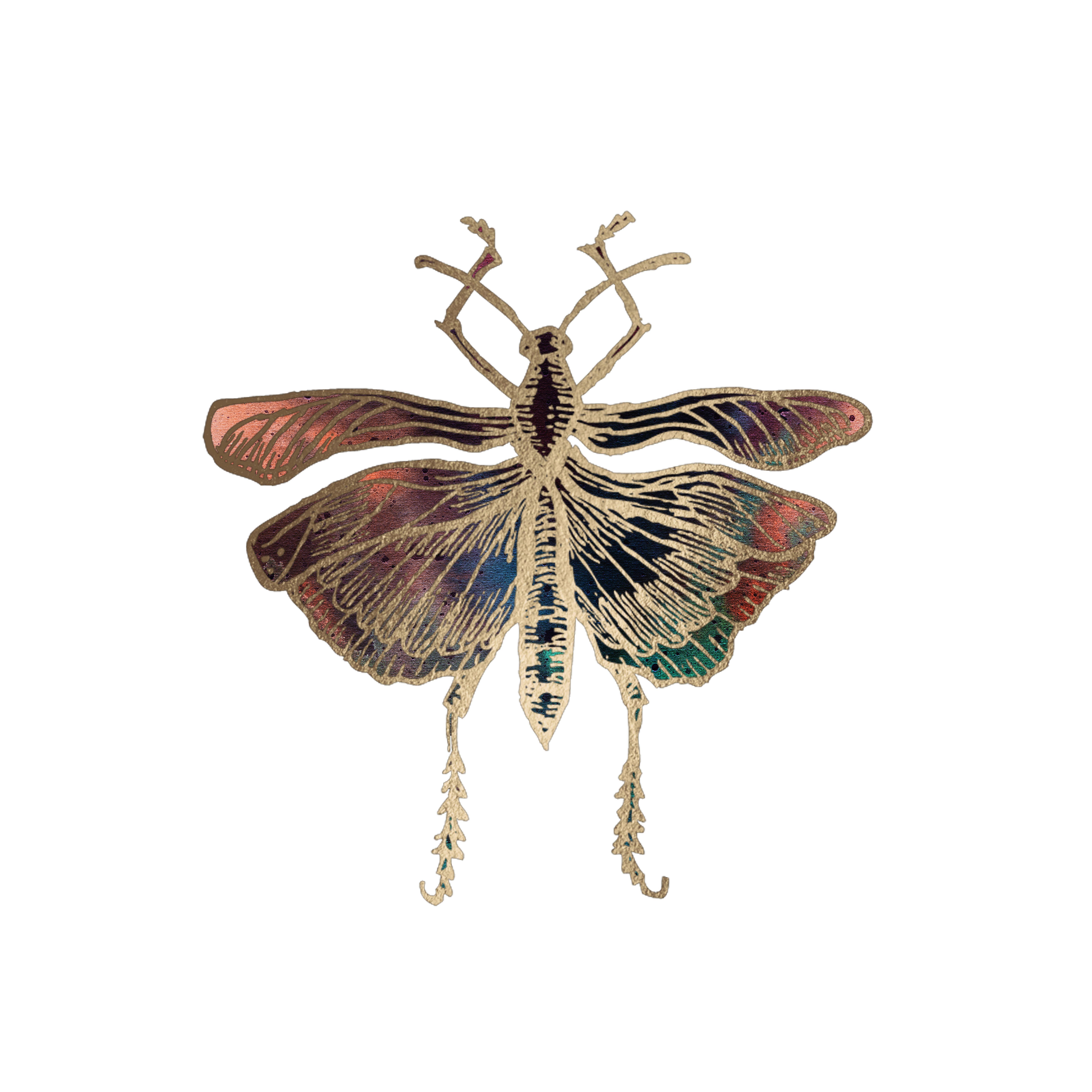 14+ Locust symbol information
