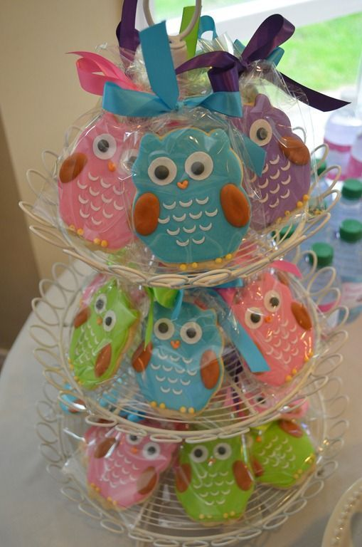 Owl Birthday Parties Baby Girl 1st Decorations Ideas