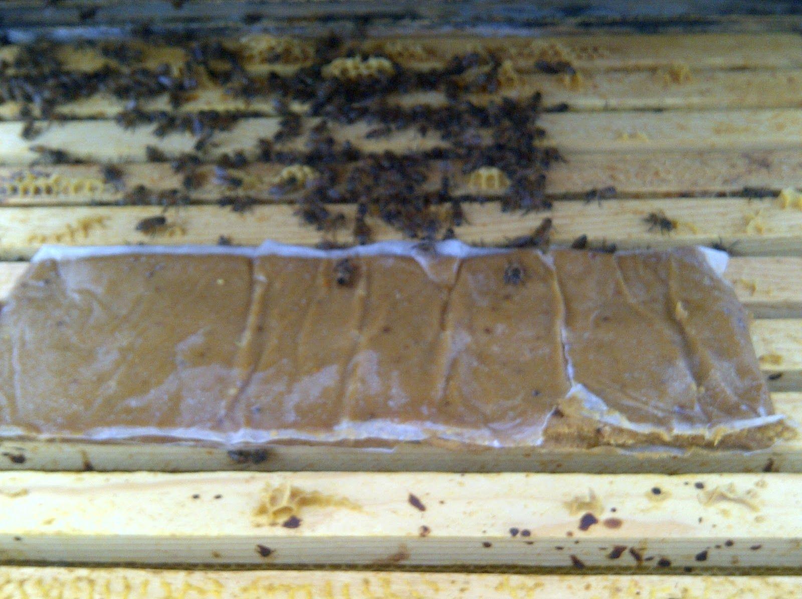 Recipe Pollen Substitute Protein Supplement 2 8 Lb
