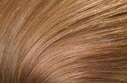 Hair Color Chart: Caramel