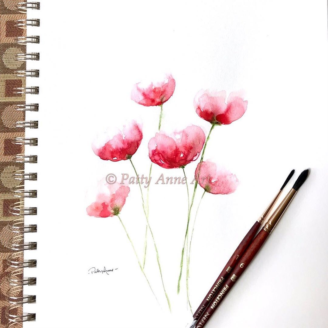 Simple Loose Watercolor Poppies Peggydeanskillshare I