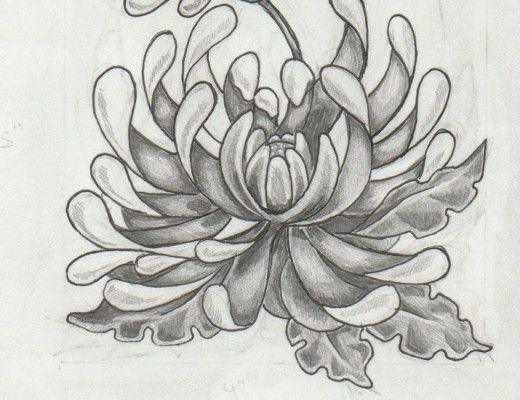 Tattoos Yellow Chrysanthemum Tattoo On Chest Chrysanthemum Tattoos Chrysanthemum Tattoo Birth Flower Tattoos Chrysanthemum Drawing