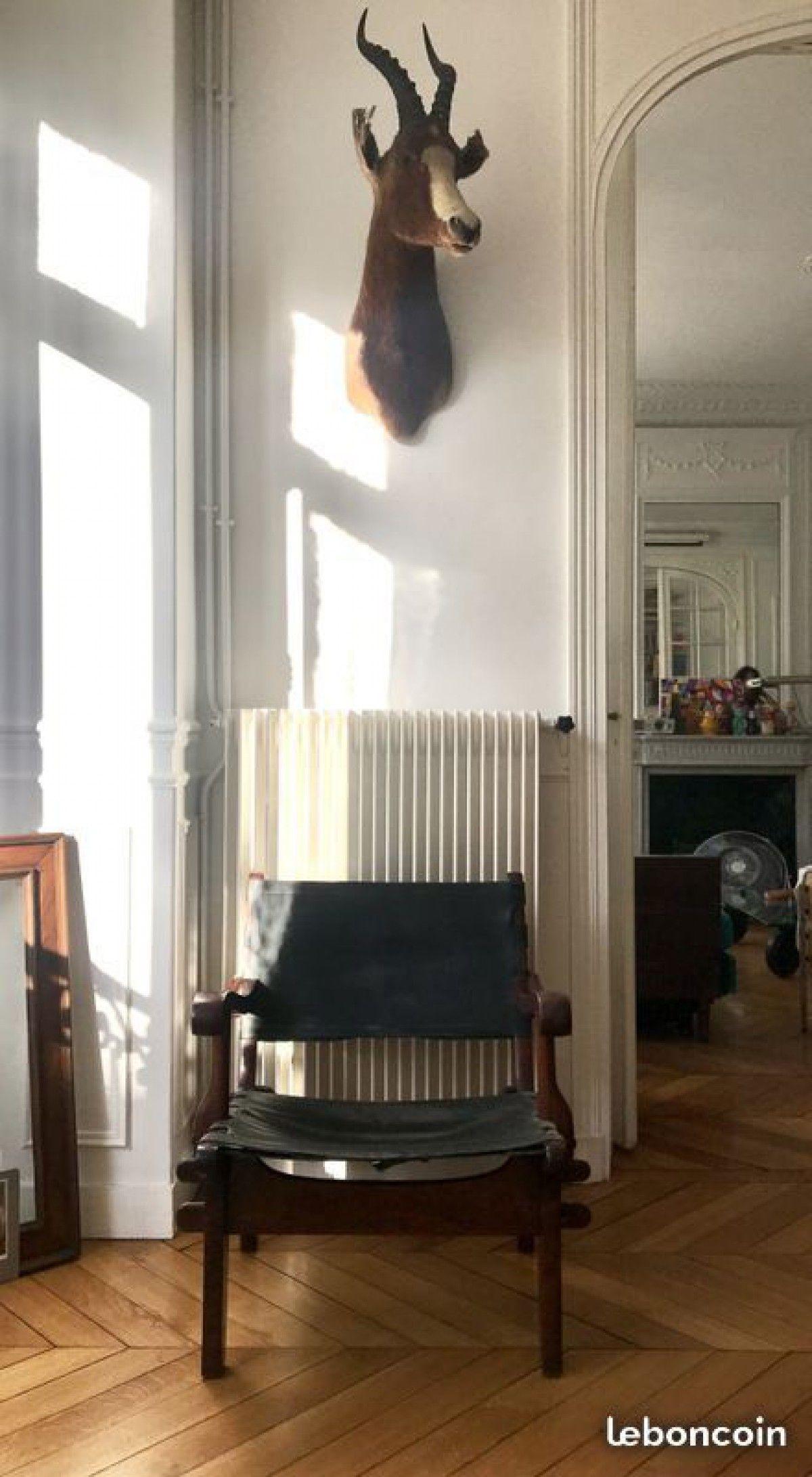 Bonjour Je Vends Un Fauteuil Safari Tres Rare Du Designer Equatotien Angel Pazmino En Palissandre De Rio Et Cuir Noir Il Dat Mobilier Design Mobilier Fauteuil