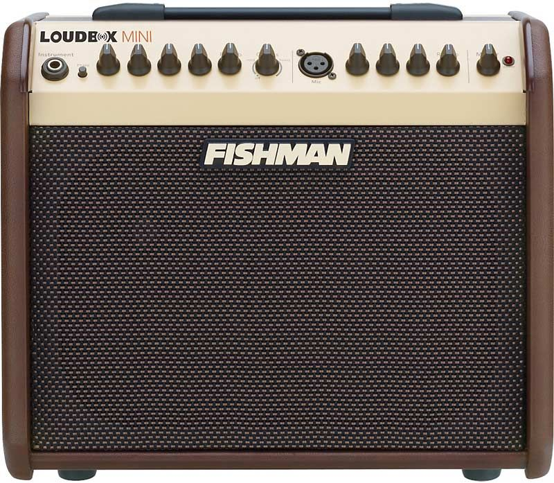 Acoustic Guitar Amplifier Buying Guide The Hub Acoustic Guitar Amp Guitar Amp Acoustic Guitar