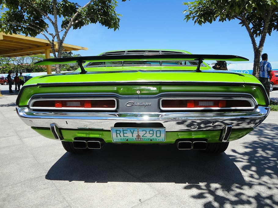 muscle car, challenger, vintage, green, retro, rear, old, classic HD wallpaper