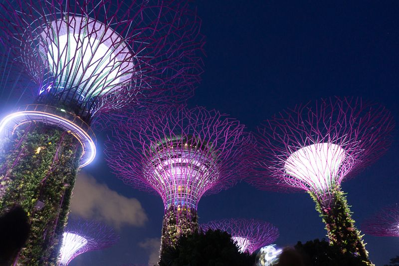 12 Best Things To Do And Places To Visit In Singapore Places To Visit Best Places In Singapore Cool Places To Visit
