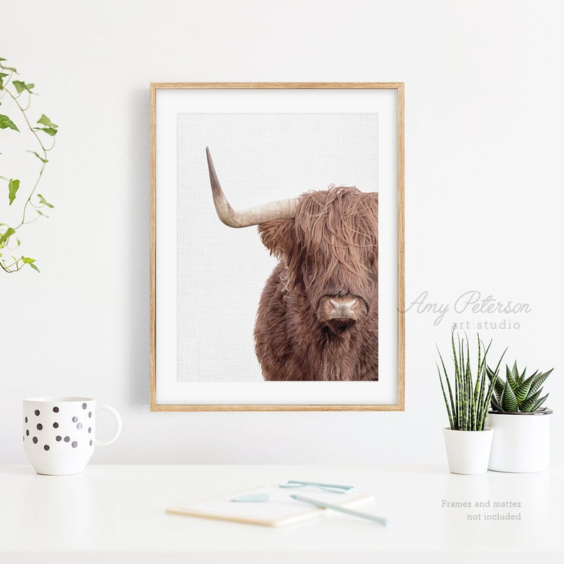 Highland Cow Print Highland Cow Wall Art By Amy Peterson Etsy In 2020 Highland Cow Print Cow Wall Art Cow Print