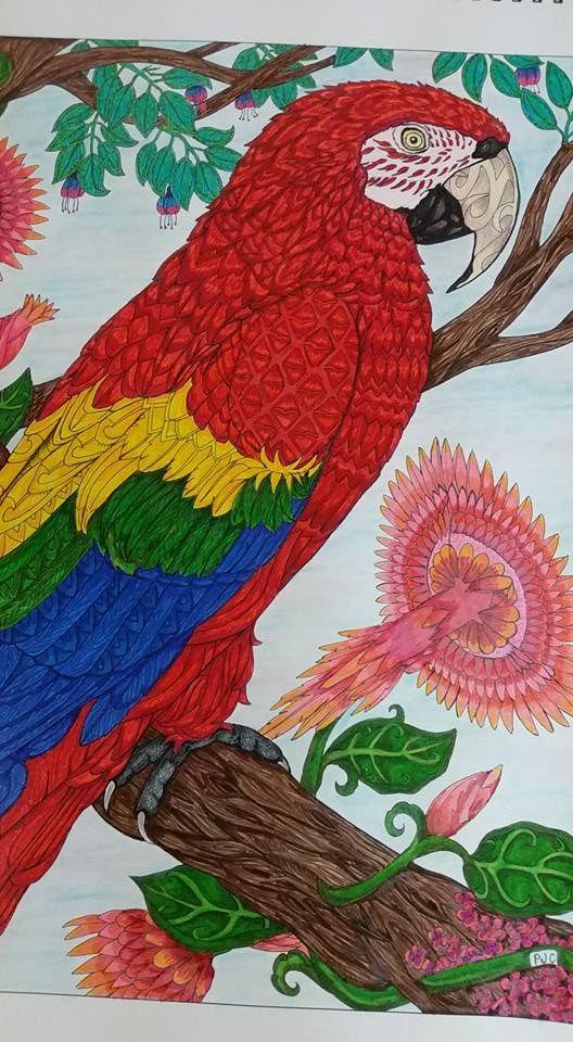 Coloured By Tammy Webb.