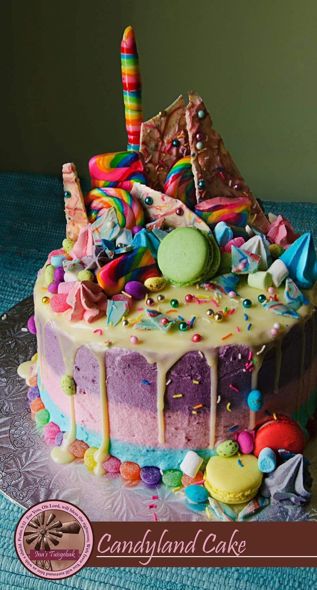 Pin by van Zyl on Kiddies party cake, food and