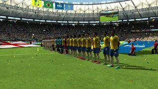 Selección de Brasil 2014