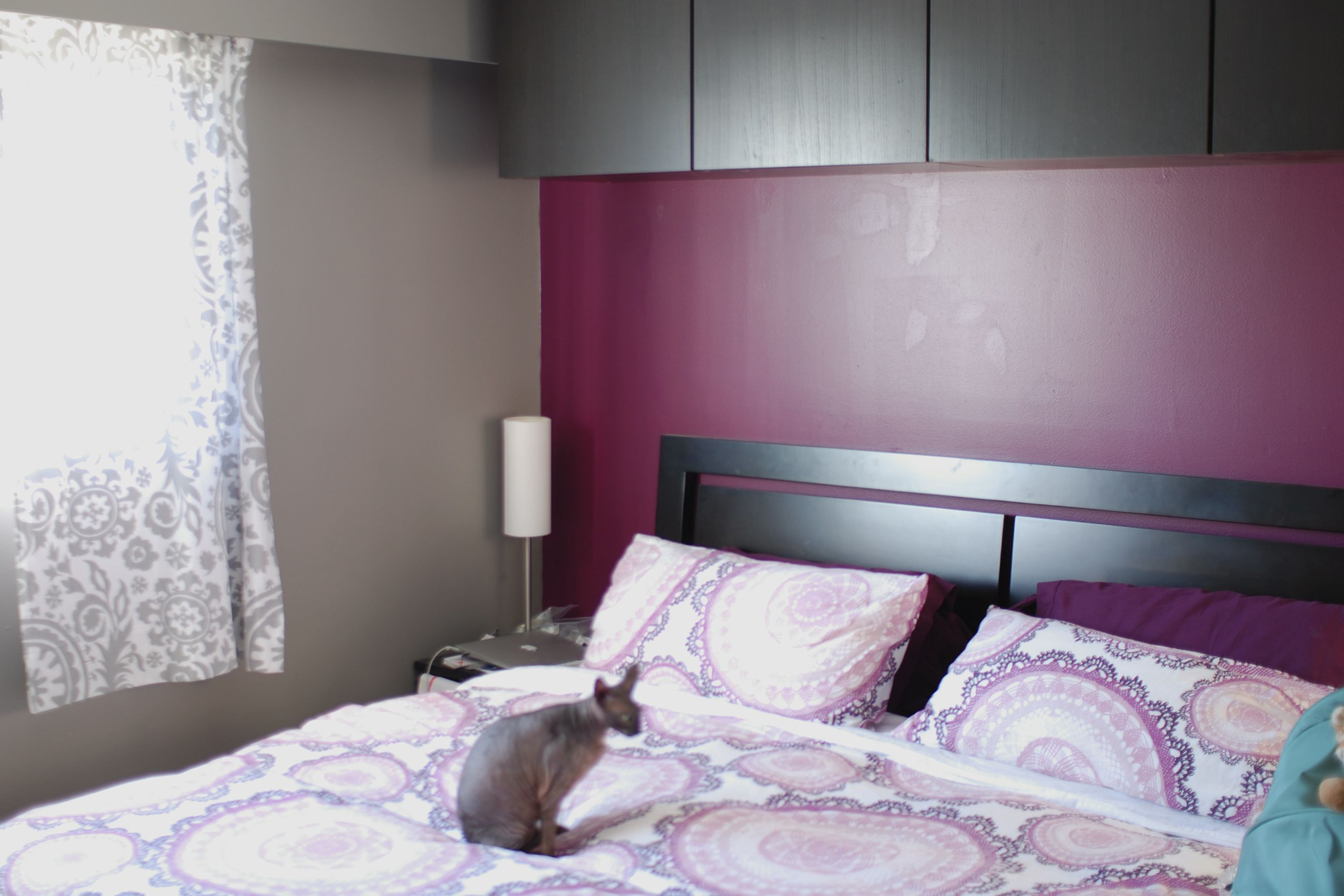 Master bedroom Grey and Purple Ikea Besta Hairless Cat