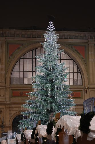 Switzerland Amazing Christmas Trees Christmas Lights Christmas Tree Decorations