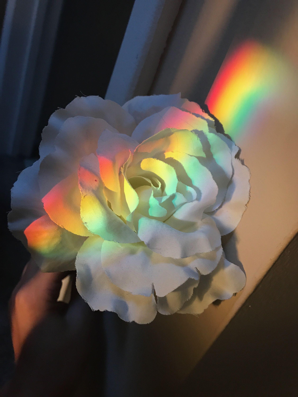 Beautiful Aesthetic Flower Aesthetic Rainbow Aesthetic Aesthetic Painting