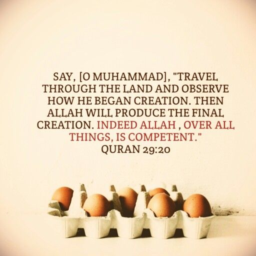 Indeed #Allah is Competent over all things (#Quran, #Islam)