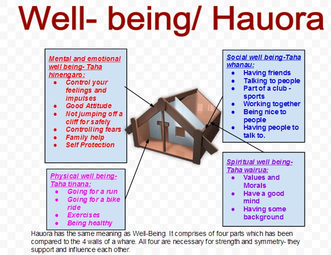 hauora - Google Search | Curriculum development, Social well being ...