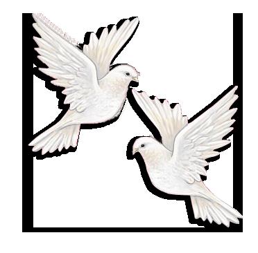 Flying Dove Tattoo Meaning Dove Tattoos Dove Tattoo Dove Tattoo Design