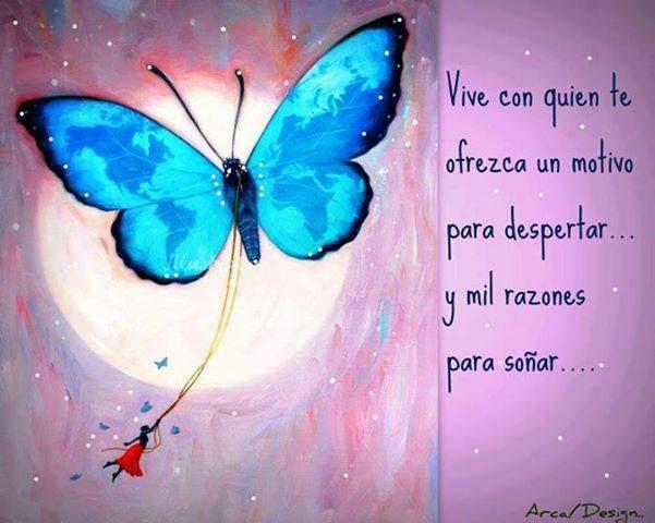 Mariposa Mi Mariposa Frases Pensamientos