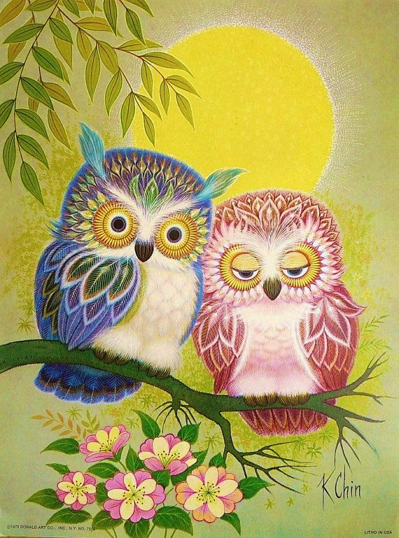 stoned owl | Awesome stuff I want | Owl, Owl art, Cute owl