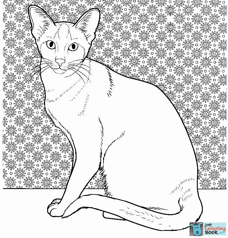 Oriental Siamese Cat Coloring Page Free Printable Coloring Pages With Siamese Cat Coloring Pages Printable For Free