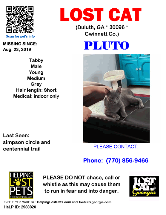 Lost Cat Duluth GA Aug.23 2019 Closest Intersection