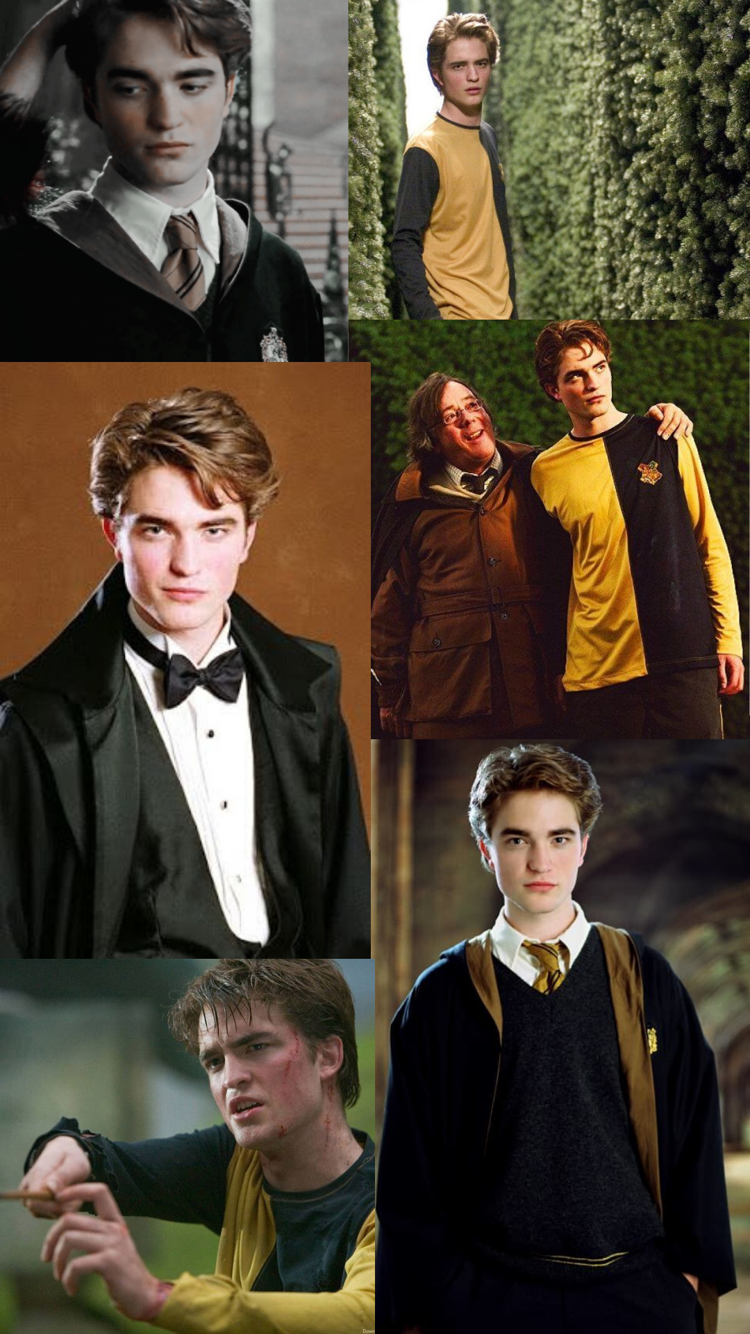 Cedric Diggory Cedric Diggory Harry Potter Hermione Cedric Diggory Aesthetic