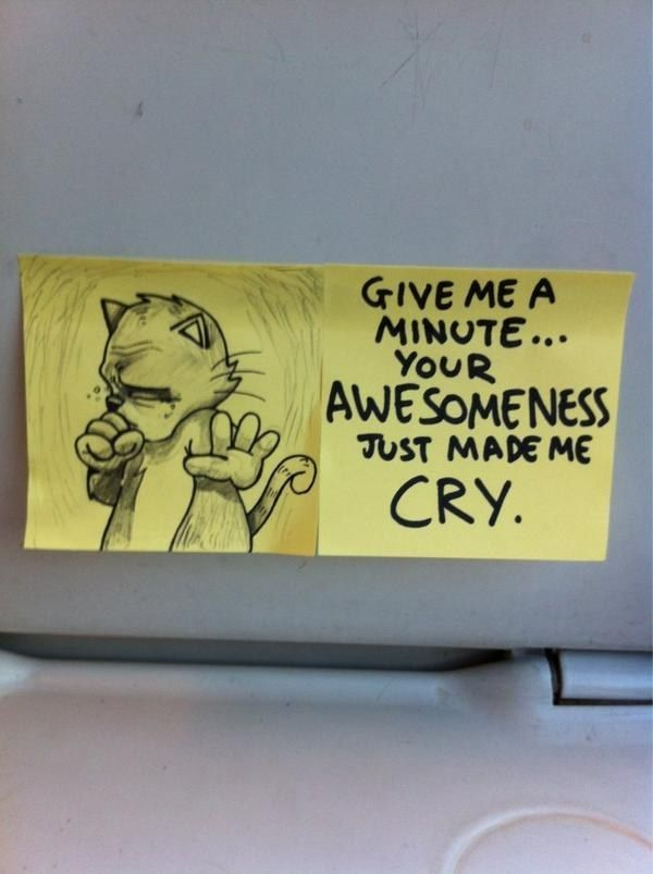 Inspirational Cat Offers Funny Uplifting Messages On PostIt - Hilarious motivational cat post notes found train