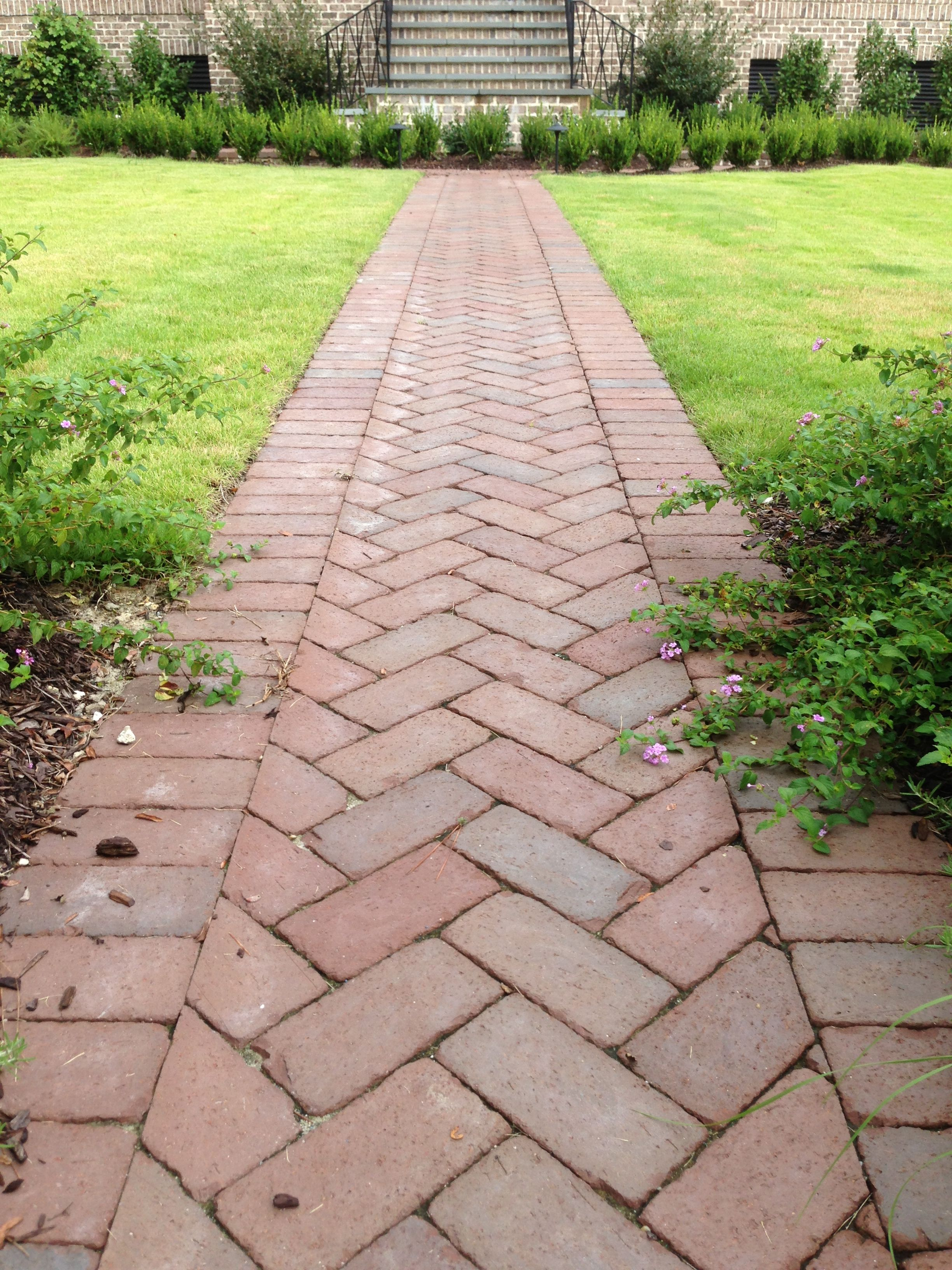 Straight Ahead This Herringbone Path With A Soldier Border Is Made From Rumbled Cocoa Clay Pavers Made By Pine Hall Br Brick Sidewalk Brick Path Brick Pavers