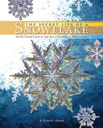 How Snowflakes Form: Homeschool Lesson Plan - Blissfully Domestic ...