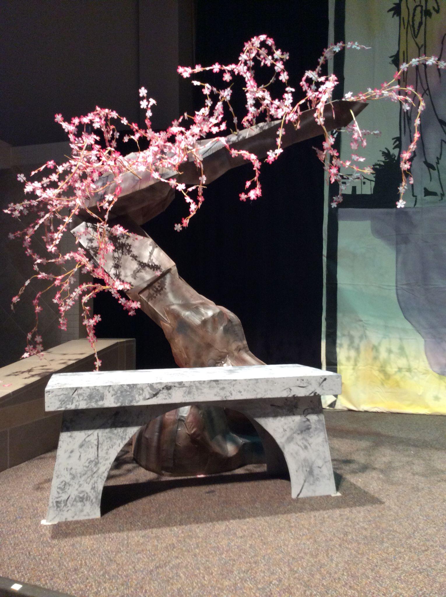 Cherry Blossom Tree And Bench Mulan Cherry Blossom Art Of Living