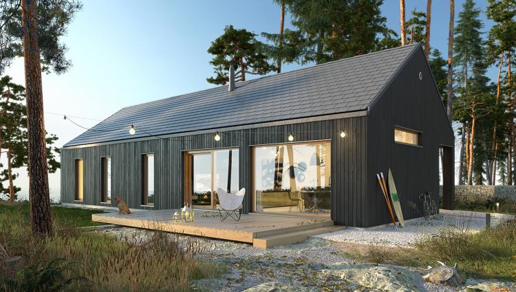 Ekonomiczny 2a Nh3 Domy Z Wizja In 2020 Modern Barn House Barn Style House Barn House