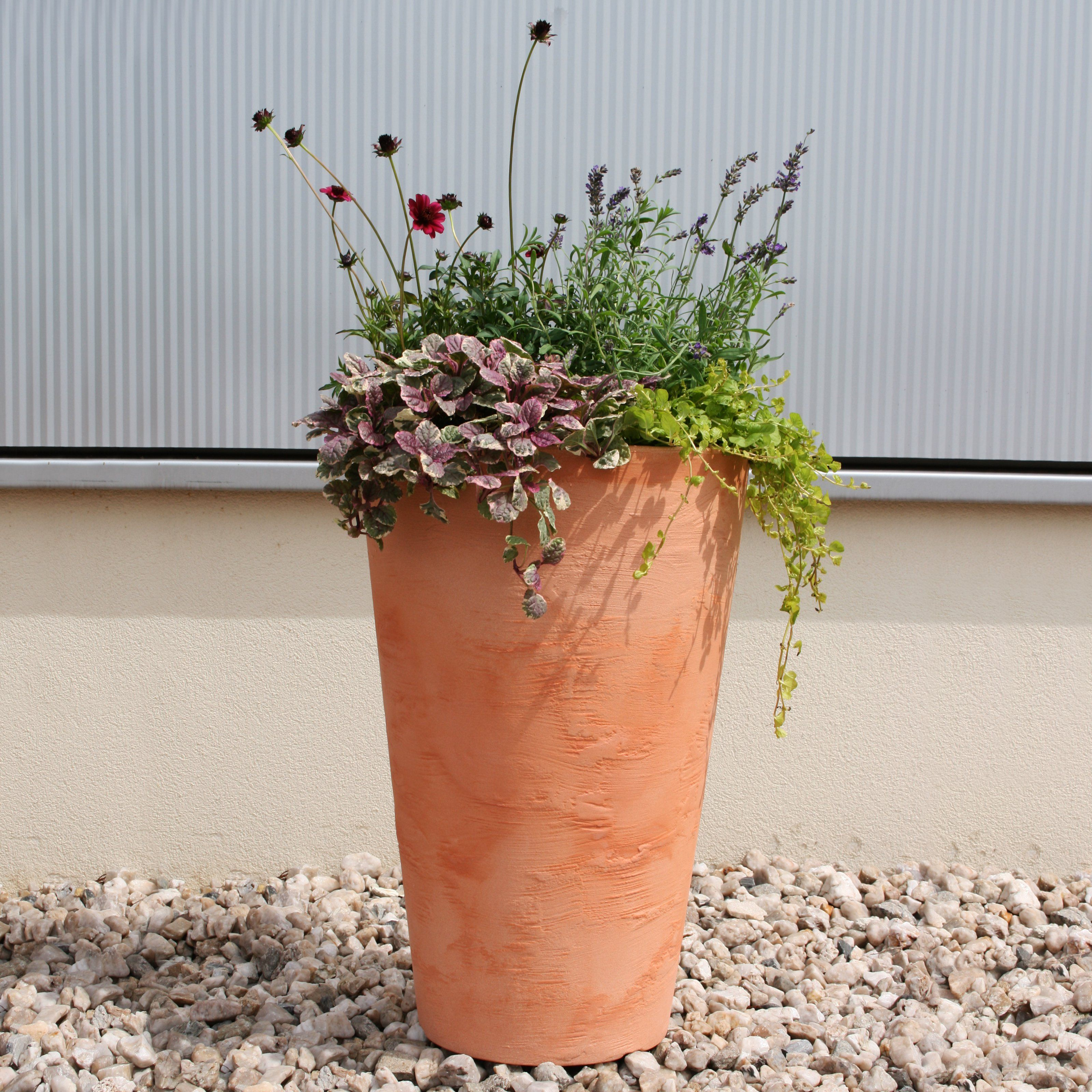 Carina Round Resin Planter From Hayneedle Com Resin Planters