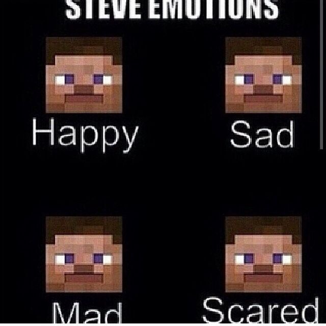 Steve Emotions Minecraft Memes Minecraft Funny Minecraft Pictures