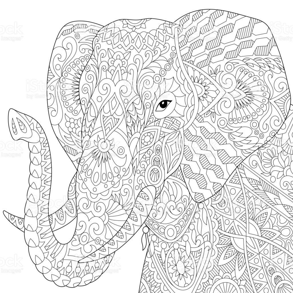African Or Indian Elephant Isolated On White Background Freehand Bilder Zum Ausmalen Ausmalbilder Malbuch Vorlagen