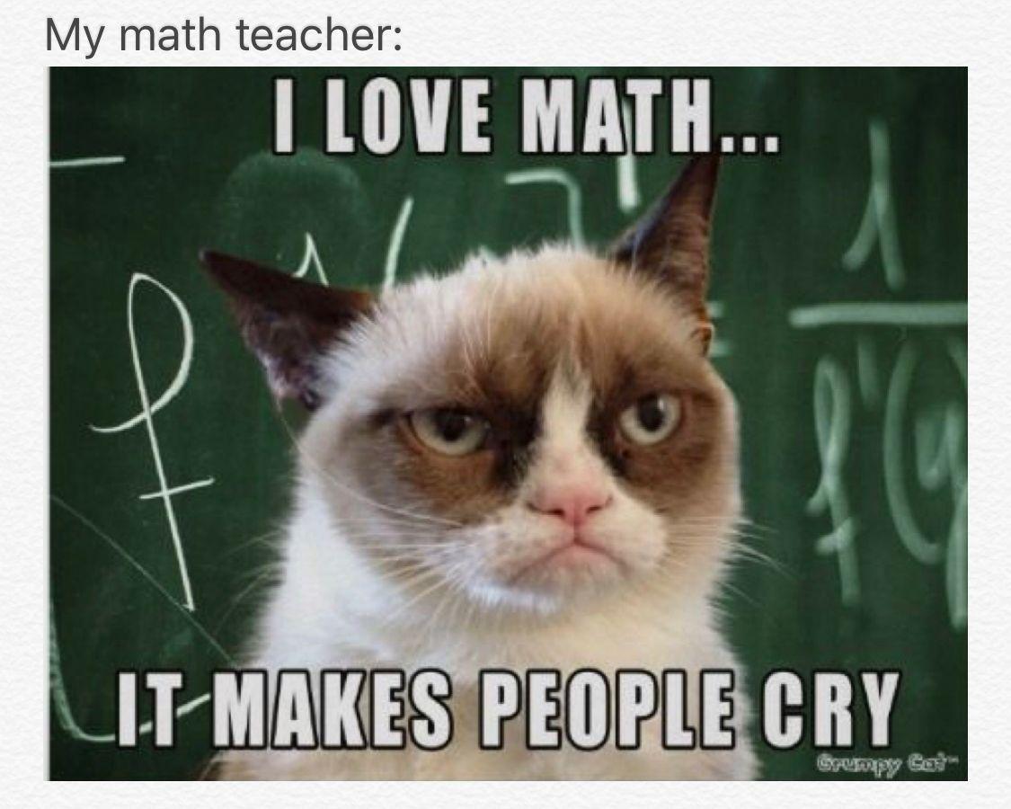 Teachers Be Like Funny Grumpy Cat Memes Grumpy Cat Quotes Grumpy Cat Humor