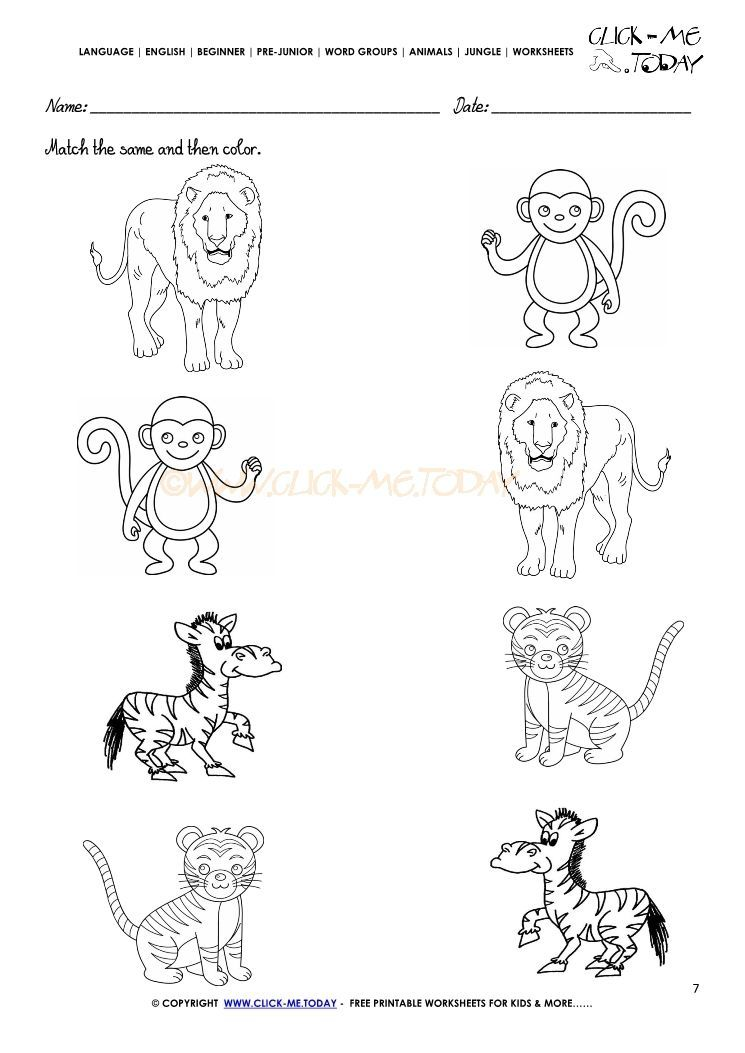 Jungle Animal Worksheet For Kindergarten In 2020 Animal Worksheets Kindergarten Worksheets Jungle Animals Preschool