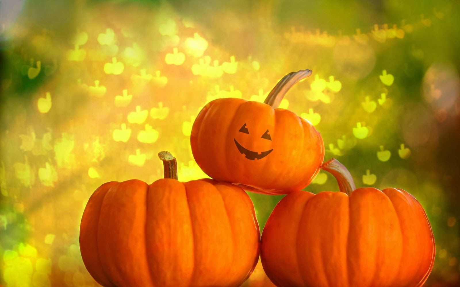 Beautiful Wallpapers: Pumpkin Wallpapers · Halloween PumpkinsHalloween BannerHappy ...