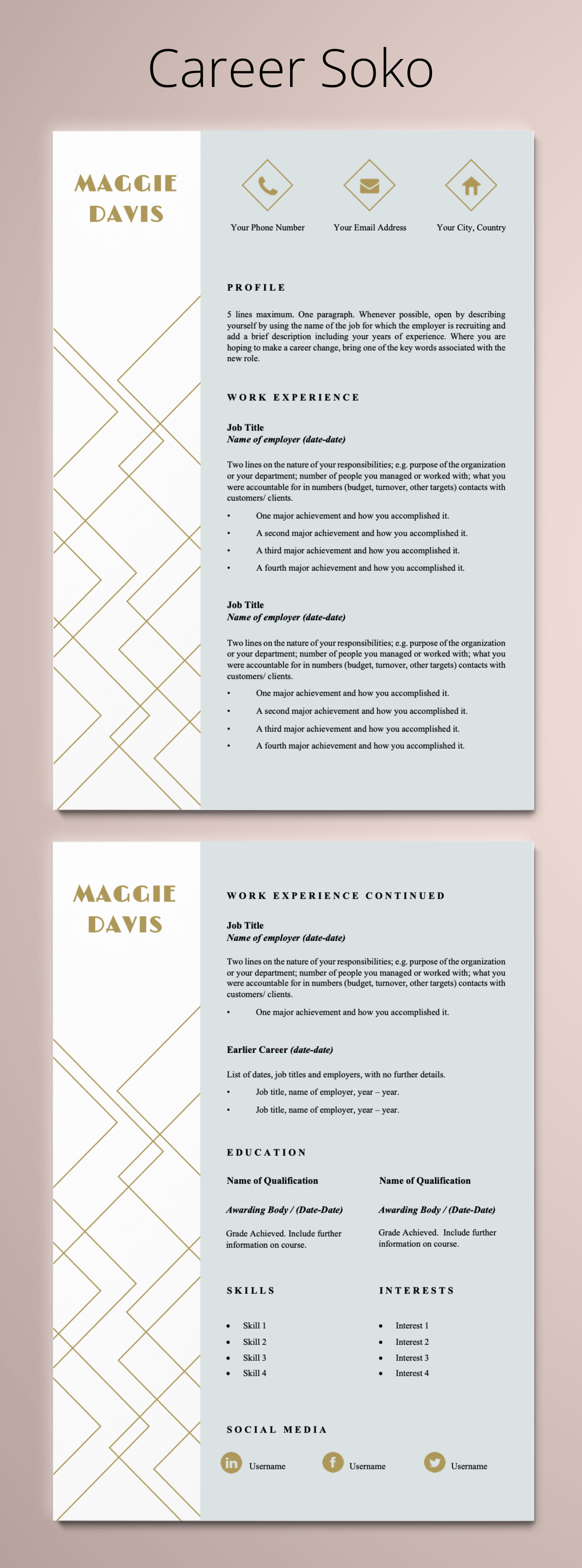 curriculum vitae minimalist resume 2 page template linkedin writers cost sample for ojt pdf icu nurse job description