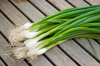 Evergreen Bunching Onions - Clusters of long, slender onions that are tasty in soups, salads or as a garnish.
