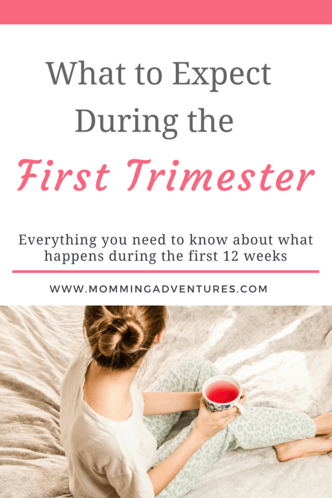 what to expect your first trimester